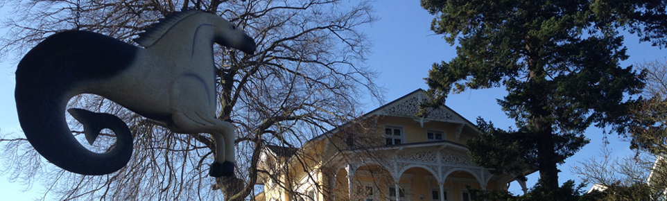 Bildergalerie vom Ort Göhren und Binz